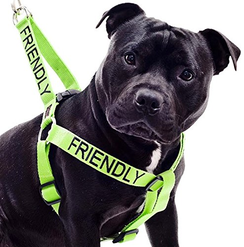 """FRIENDLY"" Green Color Coded Non-pull Dog Harness (Known As Friendly) PREVENTS Accidents By Warning Others of Your Dog in Advance! 1"