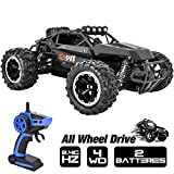 Rainbrace 4WD RC Cars for Boys, 1/16 RC Truck Remote Control Car Off Road, 4x4 RC Trucks for Kids with 2.4G Radio Control 2 Rechargeable Batteries