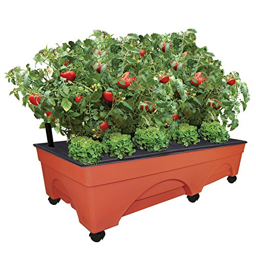 """EMSCO Group Big City Picker Raised Bed Grow Box - Self Watering and Improved Aeration - Mobile Unit with Casters - Extra Large 48"""" x 20"""" Design"""