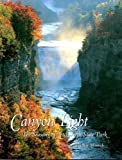 Canyon Light: The Seasons of Letchworth State Park