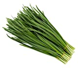 Garlic Chive Seeds - Easy to Grow and Organic