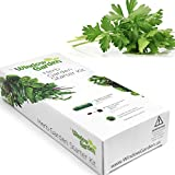 Garden Starter Kit (Parsley) Grow a Garden by Seed. Germinate Seeds on Your Windowsill Then Move to a Patio Planter or Vegetable Patch. Mini Greenhouse System Makes it Foolproof, Easy and Fun.