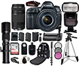 Canon EOS 5D Mark IV Digital SLR Camera Bundle with EF 24-105mm f/4L IS II USM Lens + Canon EF 75-300mm f/4-5.6 II Lens + Professional Accessory Bundle (15 items)