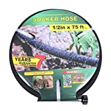 Taisia 1/2 inch Soaker Hose 75ft Lead Free Saves 70%Water Perfect Delivery of Water Great for Garden Flower Bed (1-2-75FT)
