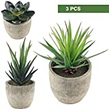 Supla 3 Pcs Assorted Decorative Boxwood Topiaries Artificial Succulent Plants Aloe Cactus with Gray Pots Faux Succulent Plants Fake succulents Artificial Topiary Cactus Plant Potted
