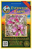 Everwilde Farms - 2000 Elegant Clarkia Native Wildflower Seeds - Gold Vault Jumbo Seed Packet