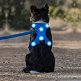 Domi LED Dog Harness, USB Rechargeable Reflective No Pull Pet Harness, Adjustable Padded Soft Vest for Small Medium Large Dogs(S, Blue)
