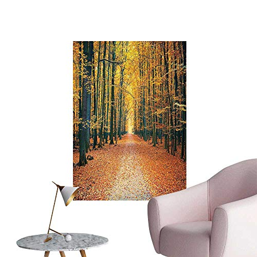 """Wall Stickers for Living Room Romantic Autumn Alley in The and Picture Print Olive Brown Paprika Vinyl Wall Stickers Print,32""""W x 56""""L"""