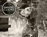 Greatest Clicks: A Dog Photographer's Best Shots