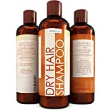 Shampoo For Dry Hair and Scalp - Nourishing Hair Oil Treatment Shampoo For Women & Men - Dry Hair Therapy For Damaged & Frizzy Hair With 100% Pure Jojoba and Almond Oil- Perfect For Color Treated Hair