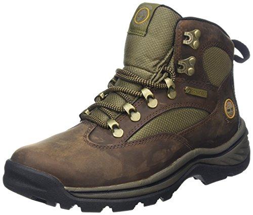 Timberland Women's Chocorua Trail Boot,Brown,10 M