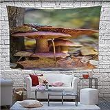 Hitecera Family of Mushrooms Taokjeffry Wall Hanging,172746 Wall Art for Bedroom,78.7''W x 59.1''H