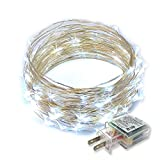 RTGS 100 LEDs String Lights Plug-in on 32 Feet Long Silver Color Wire, Indoor Outdoor Use (Cold White Color 100 LEDs 32 FEET)