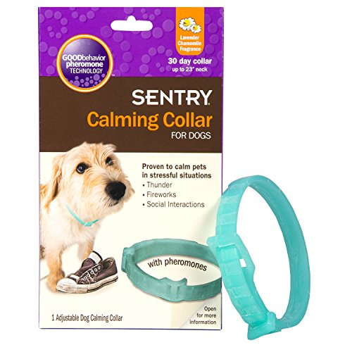 Sentry Calming Collar for Dogs 1