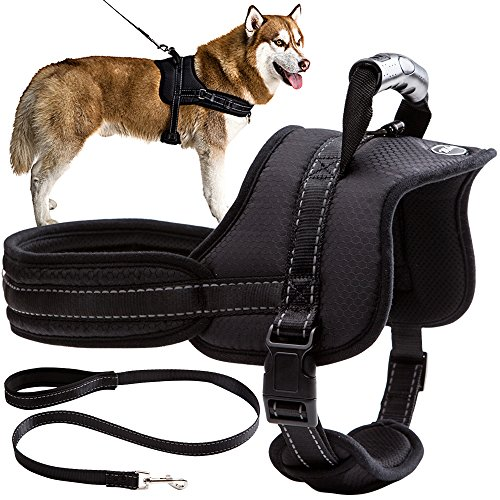 Mihachi Dog Harness with Leash with Handle No Pull No Chock Adjustable Padded Vest Harness for Dogs 1