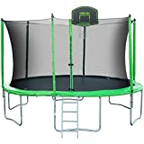 Merax 14' Round Trampoline with Safety Enclosure, Basketball Hoop & Ladder