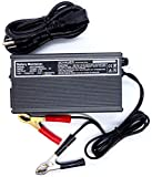 Schauer Charge Master 3 Amps 48V Automatic Battery Charge Maintainer with Battery Clips for Golf Carts