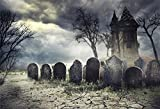 LFEEY 10x8ft Creepy Cemetery Backdrop Gothic Style Moonlight Scary Haunted House Background for Photos Ghost Tomb Gravestone Halloween Party Backdrops for Photography Photo Studio Props