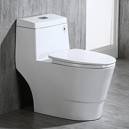 WOODBRIDGE Dual Flush
