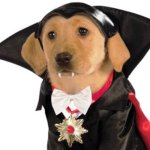 Rubies-Costume-Classic-Movie-Monsters-Collection-Pet-Costume