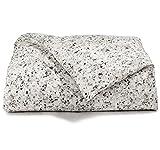 Calvin Klein Home 1710030-QN-I1-D1 Nocturnal Blossoms Comforter, Queen Comforter