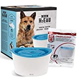 ZEUS Elevated Dog Water Dispenser, Dog Drinking Water Fountain with 4 Replacement Cartridges, Value Bundle (Packaging May Vary)