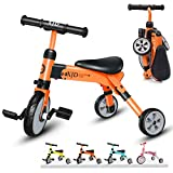 XJD 2 in 1 Kids Tricycles for 2 Years Old and Up Boys Girls Tricycle Kids Trike Toddler Tricycles for 2-4 Years Old Kids Toddler Bike Trike 3 Wheels Folding Tricycle Kids Walking Tricycle (Blue)