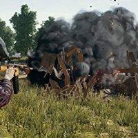 Player Unknown's Battleground [PlayStation 4] (Sony Eurasia Garantili) 17