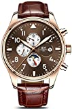 Swiss Watch Men's Complex Function Analog Automatic Mechanical Watch Stainless Steel Luminous Watch (Leather Band-Rose Gold Brown)
