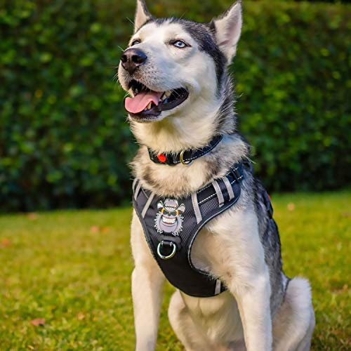 Babyltrl Large Dog Harness No Pull Anti-Tear Adjustable Pet Reflective Oxford...