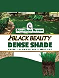 Jonathan Green 10620 Dense Shade Grass Seed Mix, 7 Pounds