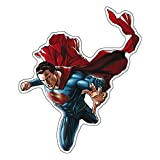Fan Emblems Superman Character Car Decal Domed/Multicolor/Clear, Batman v Superman: Dawn of Justice BvS Automotive Emblem Sticker Applies Easily to Cars, Motorcycles, Laptops, Windows, Almost Anything
