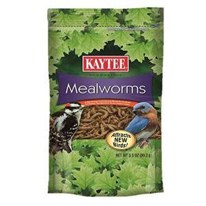 Kaytee Mealworms 6