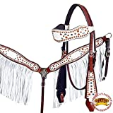 Product review for HILASON WESTERN LEATHER HORSE HEADSTALL BREAST COLLAR WHITE FLORAL BROWN FRINGES