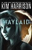 Waylaid (Kindle Single)