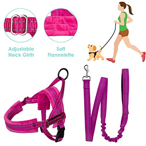 SlowTon No Pull Small Dog Harness and Leash, Heavy Duty Easy Walk Vest Harness Soft Padded Reflective Adjustable Puppy Harness Anti-Twist 4FT Pet Lead Quick Fit Lightweight for Small Dog Cat Animal 1