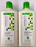 Andalou Naturals Exotic Marula Oil Silky Smooth Shampoo and Conditioner