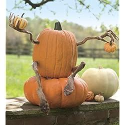 Halloween Pumpkin Appendages, set of 4