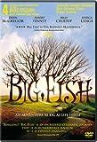 Big Fish poster thumbnail