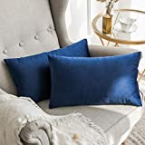 MIULEE Pack of 2 Velvet Soft Soild Decorative Square Throw Pillow Covers Set Cushion Case