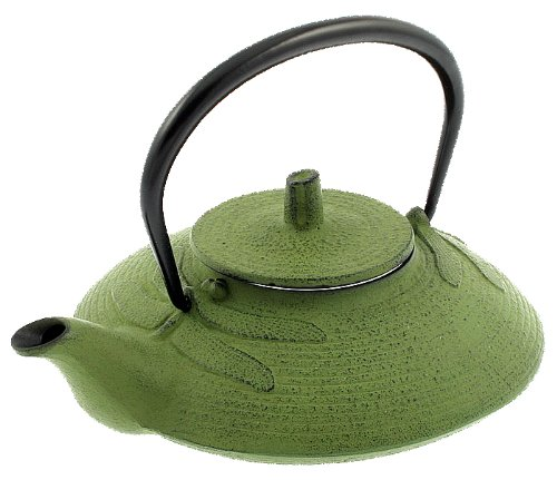 Iwachu Iron stylish kyusu, Green Dragonfly