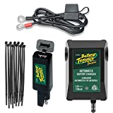 Motorcycle Dual Charge Bundle - 4 Items: Battery Tender Junior 12V 0.75A, Ring Terminal Harness With Fuse, Quick Disconnect USB and Dorman 4