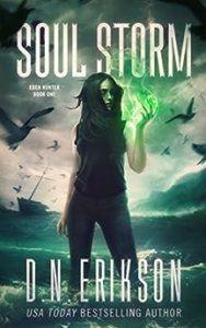 Soul Storm by D.N. Erikson