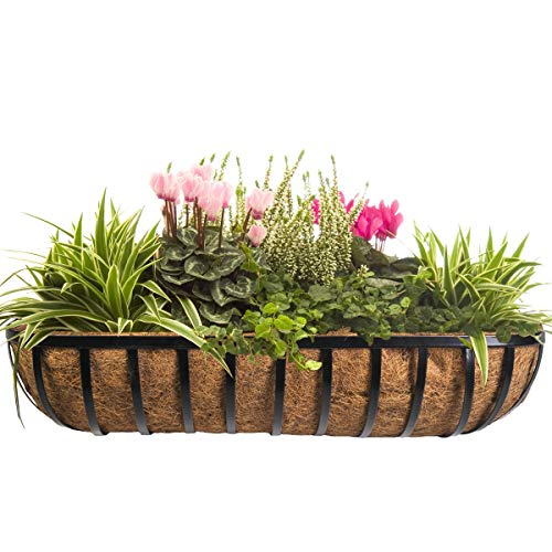 CobraCo HTR36-B 36-Inch English Horse Trough Planter, Black (Renewed)