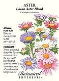 Botanical Interests, Seeds Aster China Blend