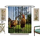 luvoluxhome Shower Curtains Fabric Extra Long Free Range Chicken on a Traditional Poultry Farm Custom Made Shower Curtain W72 x L96