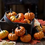 Factory Direct Craft Package of 16 Realistic Fall Mini Artificial Pumpkins for Halloween, Fall and Thanksgiving Decorating