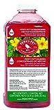 Perky-Pet 238 Hummingbird Nectar, 32-Ounce Concentrate