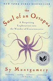 Image result for the soul of an octopusamazon
