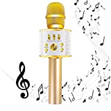 Diyomate Wireless Bluetooth Karaoke Microphone Handheld KTV Home Mic Singing Speaker Player Party Birthday Professional Microphones for iOS/Android (2600mAh)